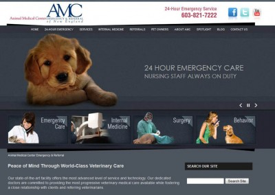 Animal Medical Center of New England