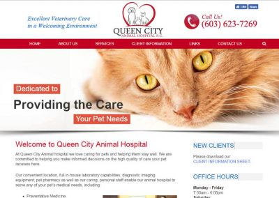Queen City Vet